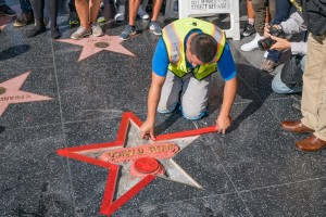 donald-trump-star-walk-of-fame-vandalism