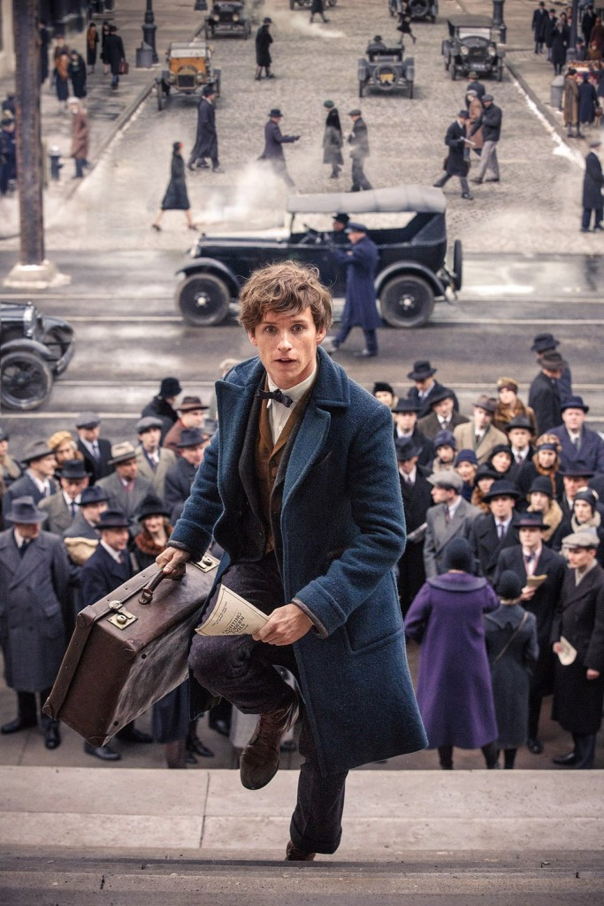 Newt Scamander Eddie Redmayne Fantastic Beasts and Where to Find Them